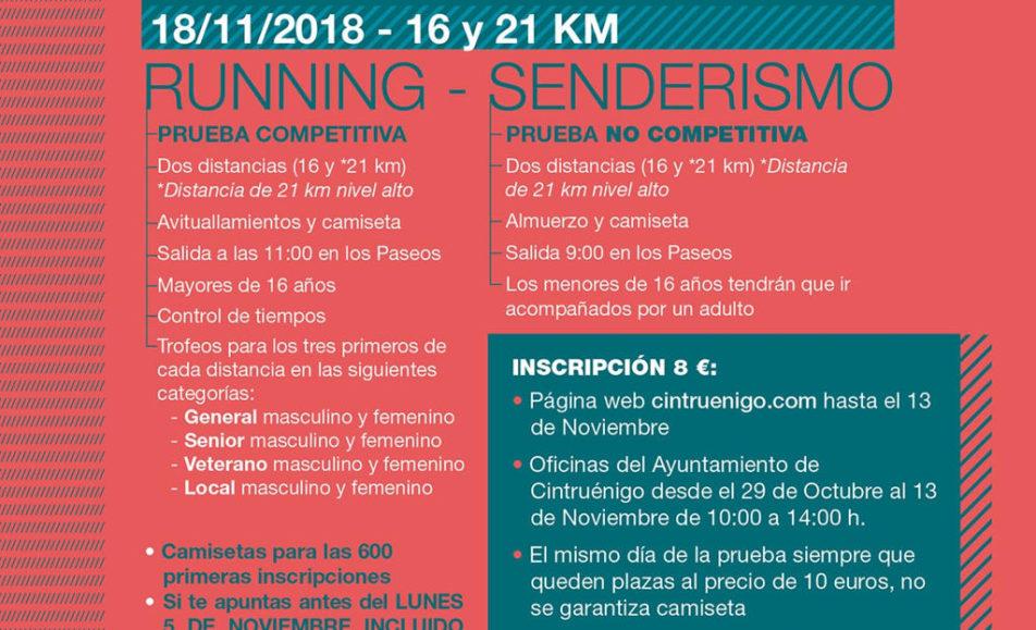 VI. DESAFIO CINTRUÉNIGO – 2018